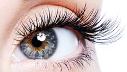 Eyelash Extension - London, Ontario